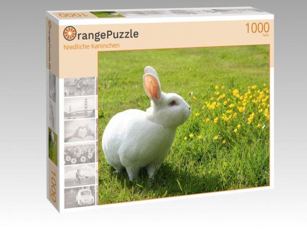 """Puzzle Motiv """"Niedliche Kaninchen"""" - Puzzle-Schachtel zu 1000 Teile Puzzle"""