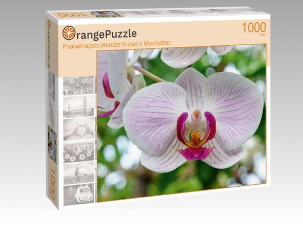 "Puzzle Motiv ""Phalaenopsis (Renate Frese) x Manhattan"" - Puzzle-Schachtel zu 1000 Teile Puzzle"