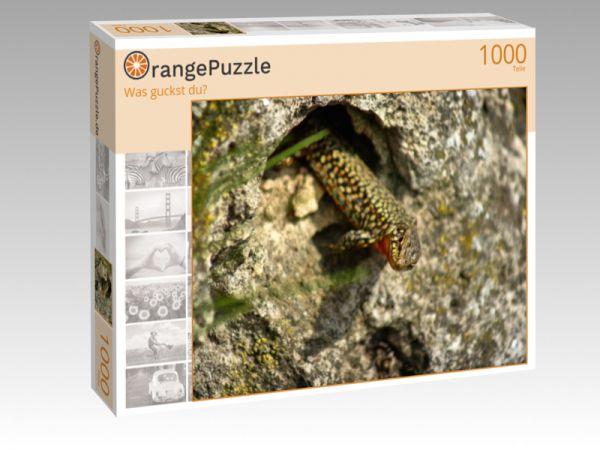 """Puzzle Motiv """"Was guckst du?"""" - Puzzle-Schachtel zu 1000 Teile Puzzle"""