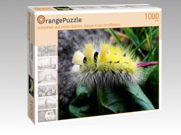 """Puzzle Motiv """"Schönheit auf vielen Beinen, Raupe eines Großfalters"""" - Puzzle-Schachtel zu 1000 Teile Puzzle"""