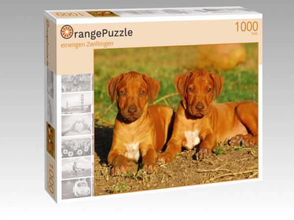 """Puzzle Motiv """"eineiigen Zwillingen"""" - Puzzle-Schachtel zu 1000 Teile Puzzle"""