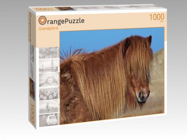 """Puzzle Motiv """"Islandpferd"""" - Puzzle-Schachtel zu 1000 Teile Puzzle"""
