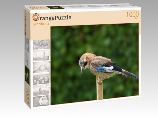 "Puzzle Motiv ""Eichelhäher"" - Puzzle-Schachtel zu 1000 Teile Puzzle"