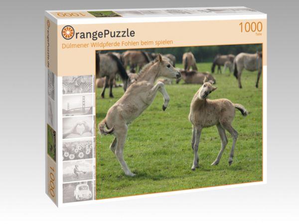 """Puzzle Motiv """"Dülmener Wildpferde Fohlen beim spielen"""" - Puzzle-Schachtel zu 1000 Teile Puzzle"""