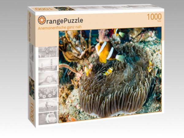 """Puzzle Motiv """"Anemonenfische ganz nah"""" - Puzzle-Schachtel zu 1000 Teile Puzzle"""