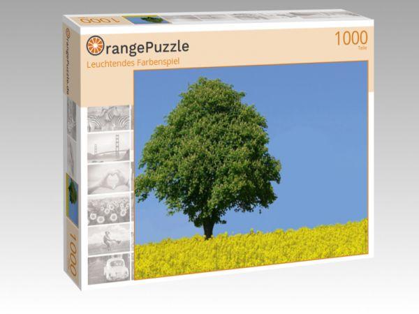 "Puzzle Motiv ""Leuchtendes Farbenspiel"" - Puzzle-Schachtel zu 1000 Teile Puzzle"