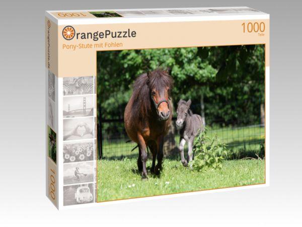 """Puzzle Motiv """"Pony-Stute mit Fohlen"""" - Puzzle-Schachtel zu 1000 Teile Puzzle"""