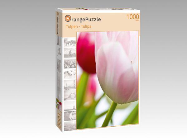 """Puzzle Motiv """"Tulpen - Tulipa"""" - Puzzle-Schachtel zu 1000 Teile Puzzle"""