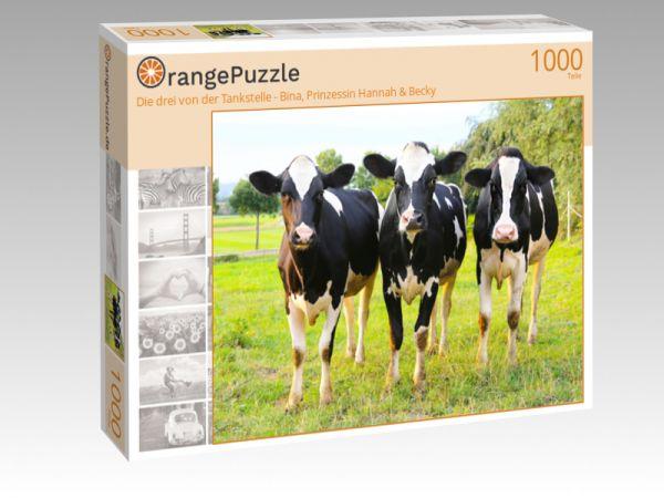 """Puzzle Motiv """"Die drei von der Tankstelle - Bina, Prinzessin Hannah & Becky"""" - Puzzle-Schachtel zu 1000 Teile Puzzle"""