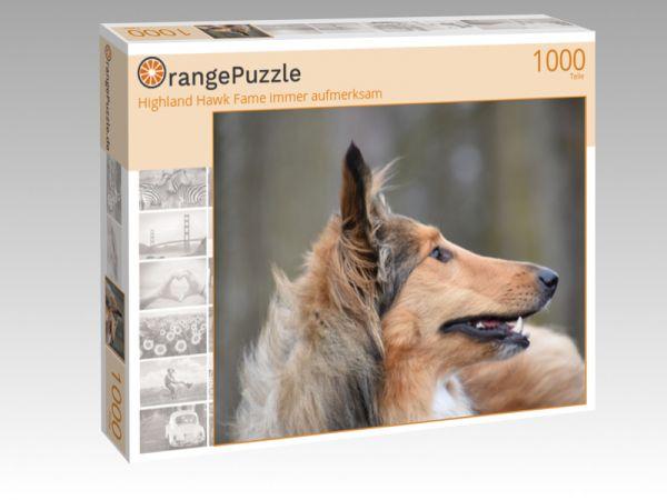 """Puzzle Motiv """"Highland Hawk Fame immer aufmerksam"""" - Puzzle-Schachtel zu 1000 Teile Puzzle"""