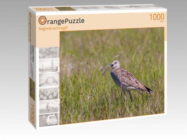 """Puzzle Motiv """"Regenbrachvogel"""" - Puzzle-Schachtel zu 1000 Teile Puzzle"""