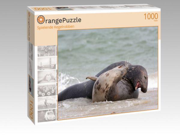 """Puzzle Motiv """"Spielende Kegelrobben"""" - Puzzle-Schachtel zu 1000 Teile Puzzle"""