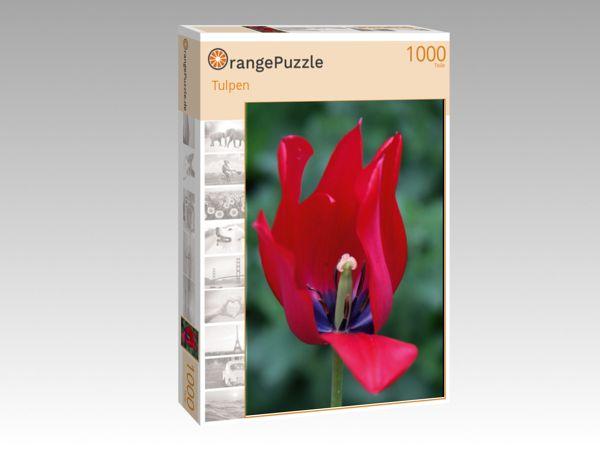 """Puzzle Motiv """"Tulpen"""" - Puzzle-Schachtel zu 1000 Teile Puzzle"""