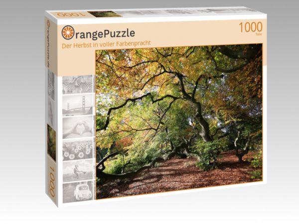 """Puzzle Motiv """"Der Herbst in voller Farbenpracht"""" - Puzzle-Schachtel zu 1000 Teile Puzzle"""