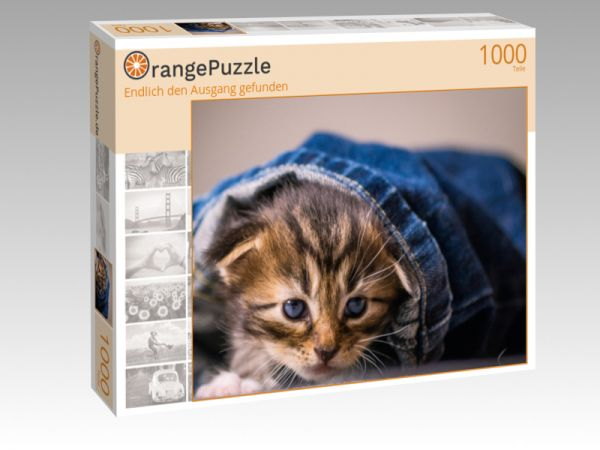 """Puzzle Motiv """"Endlich den Ausgang gefunden"""" - Puzzle-Schachtel zu 1000 Teile Puzzle"""
