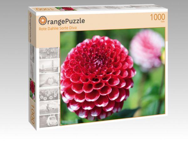 """Puzzle Motiv """"Rote Dahlie Sorte Diva"""" - Puzzle-Schachtel zu 1000 Teile Puzzle"""