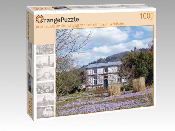 """Puzzle Motiv """"Krokusblüte im Sichtungsgarten Hermannshof / Weinheim"""" - Puzzle-Schachtel zu 1000 Teile Puzzle"""