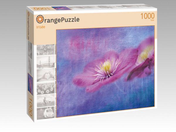 """Puzzle Motiv """"Irisée"""" - Puzzle-Schachtel zu 1000 Teile Puzzle"""