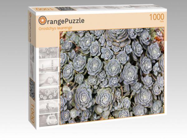 """Puzzle Motiv """"Orostchys iwarenge"""" - Puzzle-Schachtel zu 1000 Teile Puzzle"""