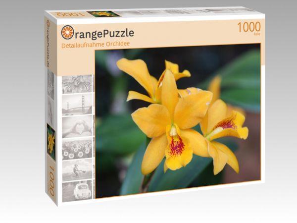 """Puzzle Motiv """"Detailaufnahme Orchidee"""" - Puzzle-Schachtel zu 1000 Teile Puzzle"""
