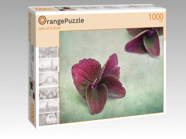 """Puzzle Motiv """"two of a kind"""" - Puzzle-Schachtel zu 1000 Teile Puzzle"""