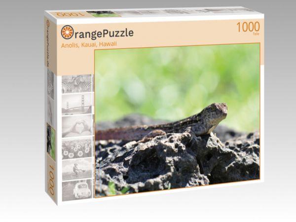"""Puzzle Motiv """"Anolis, Kauai, Hawaii"""" - Puzzle-Schachtel zu 1000 Teile Puzzle"""