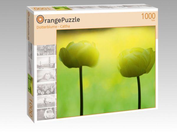 """Puzzle Motiv """"Dotterblume - Caltha"""" - Puzzle-Schachtel zu 1000 Teile Puzzle"""