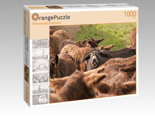 """Puzzle Motiv """"Flehmende Eselstute"""" - Puzzle-Schachtel zu 1000 Teile Puzzle"""