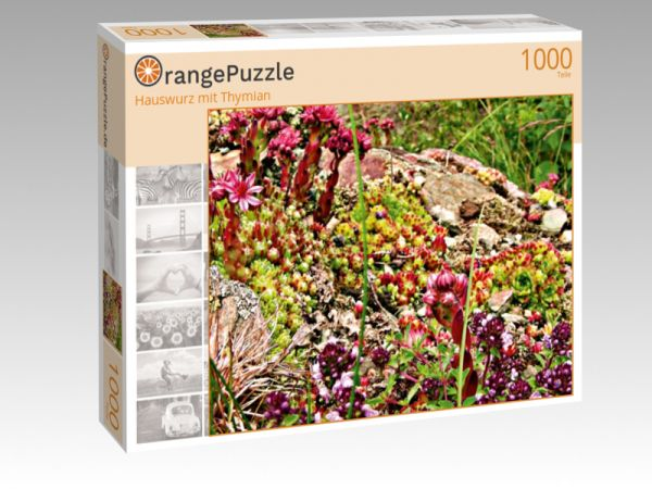 "Puzzle Motiv ""Hauswurz mit Thymian"" - Puzzle-Schachtel zu 1000 Teile Puzzle"