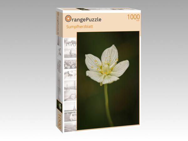 """Puzzle Motiv """"Sumpfherzblatt"""" - Puzzle-Schachtel zu 1000 Teile Puzzle"""