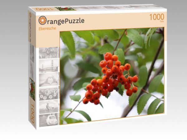 """Puzzle Motiv """"Eberesche"""" - Puzzle-Schachtel zu 1000 Teile Puzzle"""