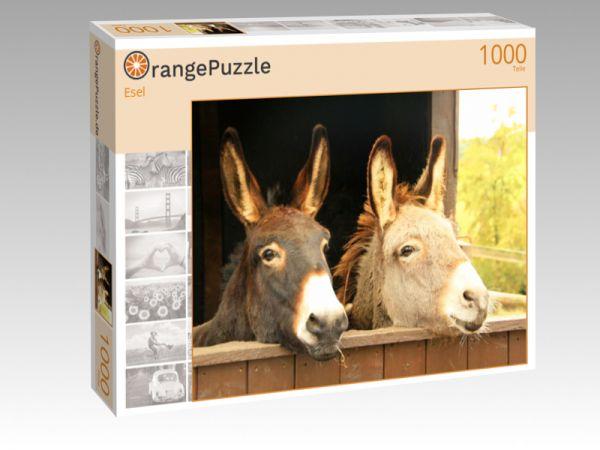 """Puzzle Motiv """"Esel"""" - Puzzle-Schachtel zu 1000 Teile Puzzle"""