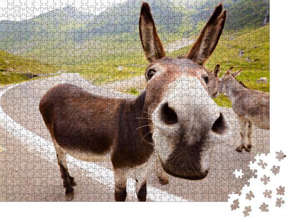 """Puzzle-Motiv """"Lustiger Esel auf der Transfagarasan Straße in den rumänischen Bergen"""" - Puzzle-Teile zu 1000 Teile Puzzle"""