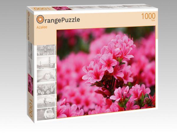 """Puzzle Motiv """"Azalee"""" - Puzzle-Schachtel zu 1000 Teile Puzzle"""