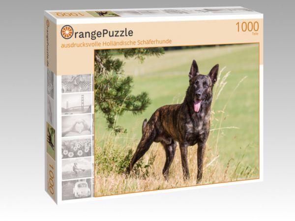 """Puzzle Motiv """"ausdrucksvolle Holländische Schäferhunde"""" - Puzzle-Schachtel zu 1000 Teile Puzzle"""