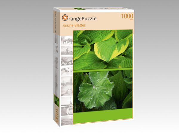 """Puzzle Motiv """"Grüne Blätter"""" - Puzzle-Schachtel zu 1000 Teile Puzzle"""