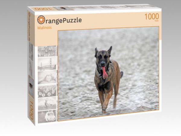 """Puzzle Motiv """"Malinois"""" - Puzzle-Schachtel zu 1000 Teile Puzzle"""