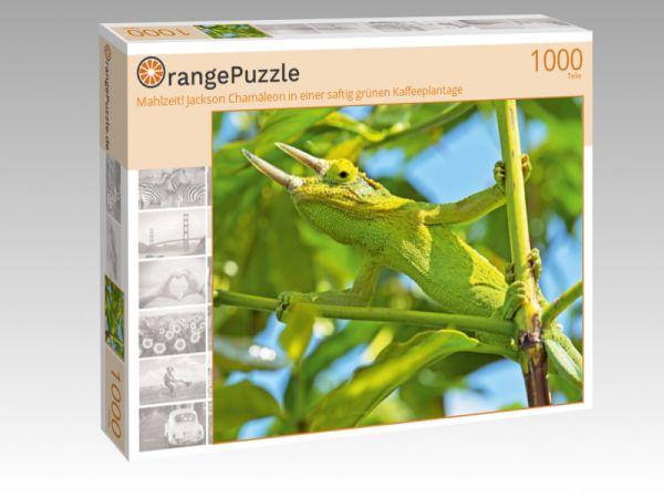 """Puzzle Motiv """"Mahlzeit! Jackson Chamäleon in einer saftig grünen Kaffeeplantage"""" - Puzzle-Schachtel zu 1000 Teile Puzzle"""
