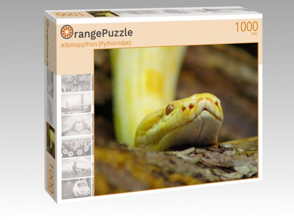 """Puzzle Motiv """"Albinopython (Pythonidae)"""" - Puzzle-Schachtel zu 1000 Teile Puzzle"""