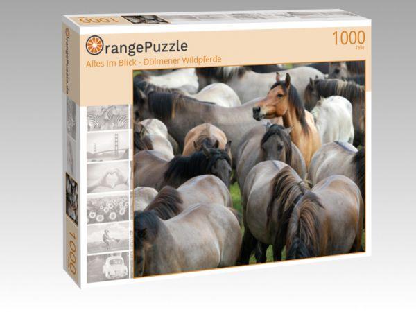 """Puzzle Motiv """"Alles im Blick - Dülmener Wildpferde"""" - Puzzle-Schachtel zu 1000 Teile Puzzle"""