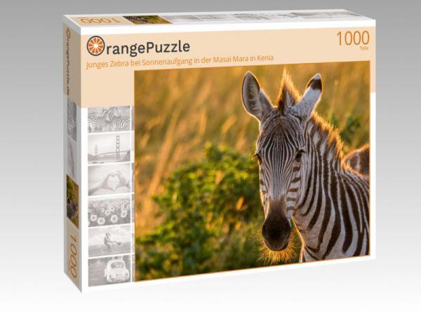 """Puzzle Motiv """"Junges Zebra bei Sonnenaufgang in der Masai Mara in Kenia"""" - Puzzle-Schachtel zu 1000 Teile Puzzle"""