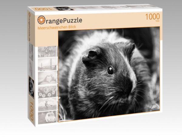 """Puzzle Motiv """"Meerschweinchen Blick"""" - Puzzle-Schachtel zu 1000 Teile Puzzle"""