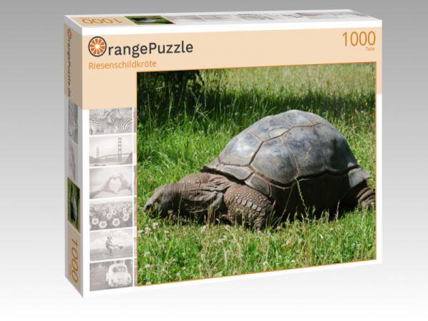 "Puzzle Motiv ""Riesenschildkröte"" - Puzzle-Schachtel zu 1000 Teile Puzzle"