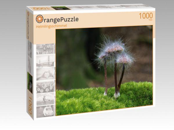 """Puzzle Motiv """"Helmlingsschimmel"""" - Puzzle-Schachtel zu 1000 Teile Puzzle"""