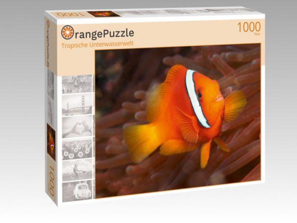 """Puzzle Motiv """"Tropische Unterwasserwelt"""" - Puzzle-Schachtel zu 1000 Teile Puzzle"""
