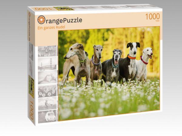"""Puzzle Motiv """"Ein ganzes Rudel"""" - Puzzle-Schachtel zu 1000 Teile Puzzle"""