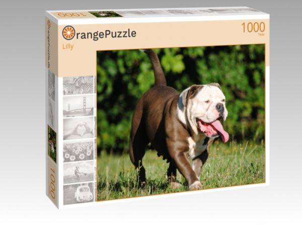 """Puzzle Motiv """"Lilly"""" - Puzzle-Schachtel zu 1000 Teile Puzzle"""