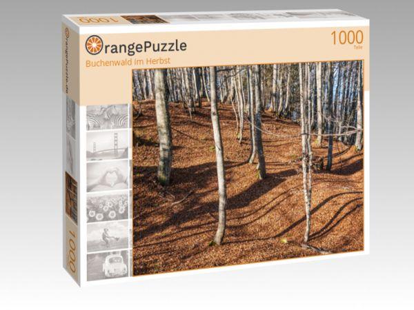 """Puzzle Motiv """"Buchenwald im Herbst"""" - Puzzle-Schachtel zu 1000 Teile Puzzle"""