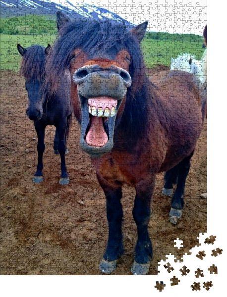 """Puzzle-Motiv """"Lachendes/lächelndes Pferd mit verschmutzten Zähnen"""" - Puzzle-Teile zu 1000 Teile Puzzle"""