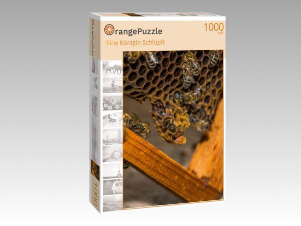 """Puzzle Motiv """"Eine Königin Schlüpft"""" - Puzzle-Schachtel zu 1000 Teile Puzzle"""